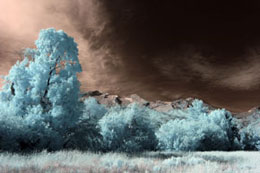 Amplified Color IR Filter (665nm) - No Adjustments