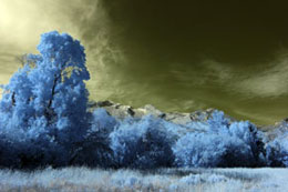 Extreme Color IR Filter (590nm) - No Adjustments