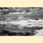 Grand Tetons National Park - Oxbow Bend I (Black & White - Print)