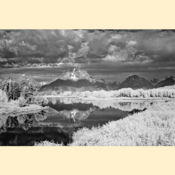 Grand Tetons National Park - Oxbow Bend II (Black & White - Print)