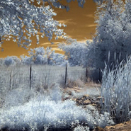 Extreme Color IR Filter (590nm)