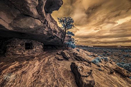 Recommended Cameras for Infrared Photography :: Spencers Camera