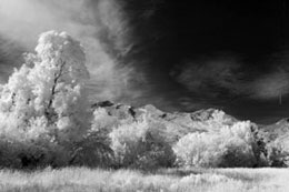 Standard Color IR Filter (720nm) - B&W Image Conversion